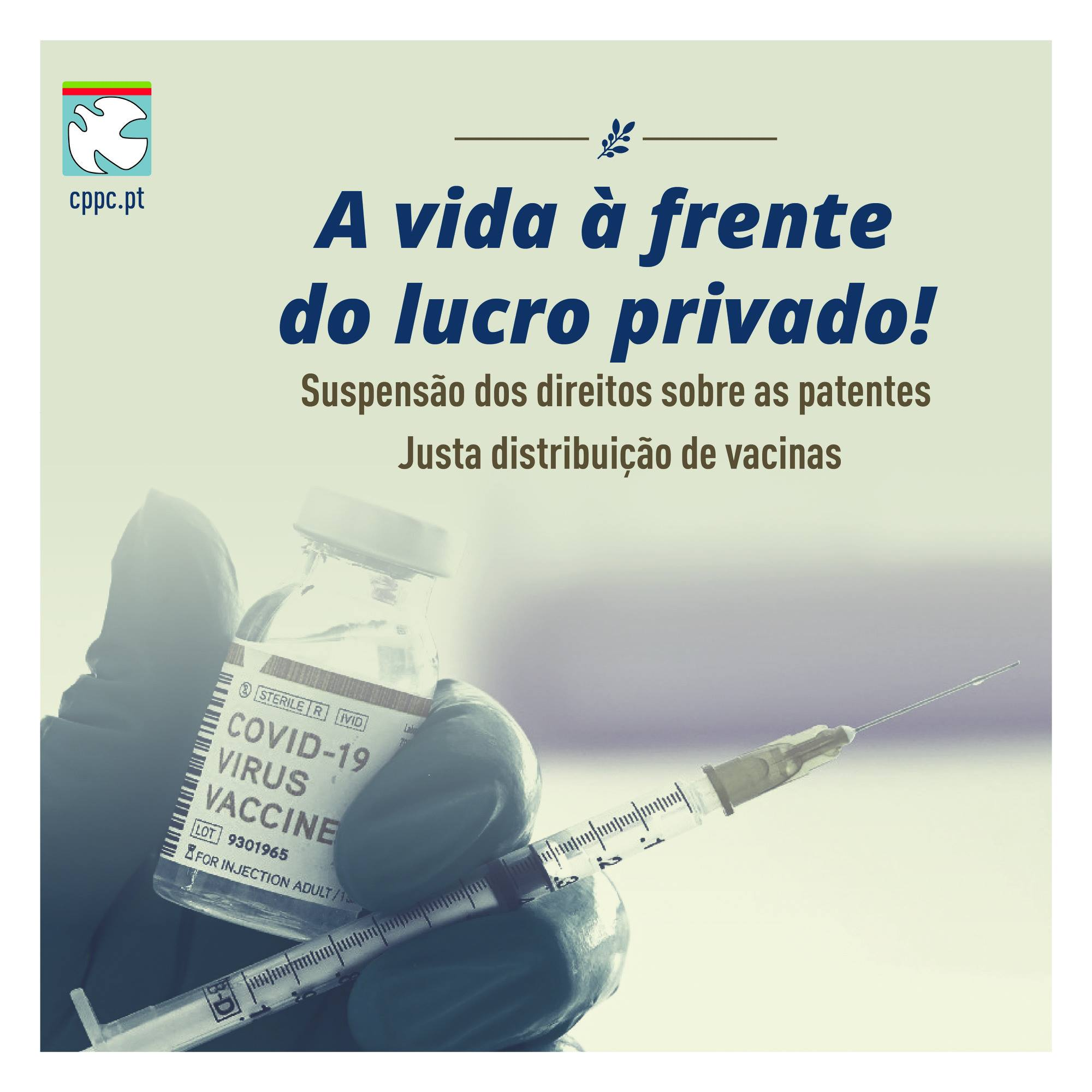 a vida a frente do lucro privado 1 20210317 1387069922