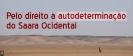 CPPC saúda a Frente Polisário pelo seu 46.º aniversário_1
